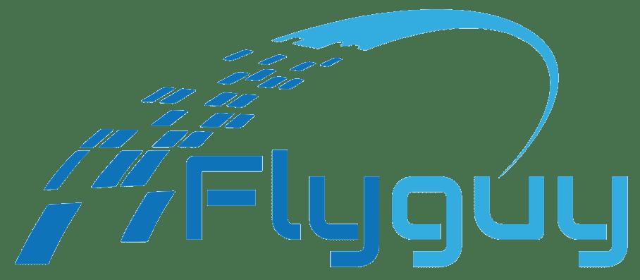 Fly Guy - בניית אתרים 072-3361333
